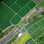 Natječaj za provedbu Mjere 21 Izvanredna privremena potpora poljoprivrednicima i MSP-ovima koji su posebno pogođeni krizom uzrokovanom bolešću COVID-19
