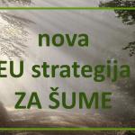 Europski zeleni plan: Komisija predlaže novu strategiju za zaštitu i obnovu šuma u EU
